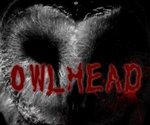 owlhead-rebuild-ss
