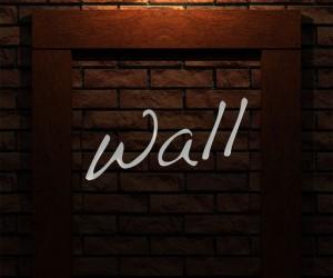 wall-ss